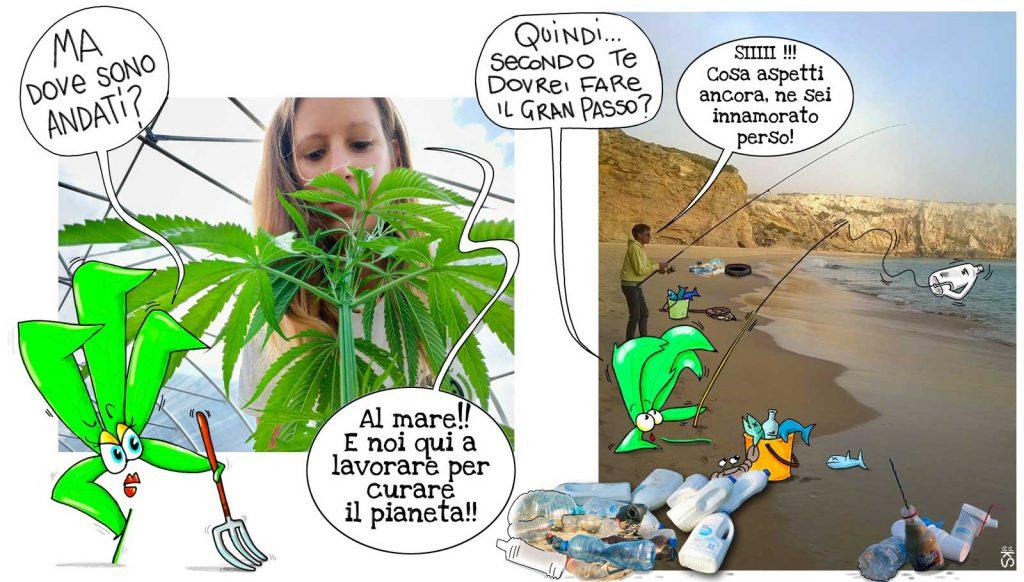 Plastica di Canapa